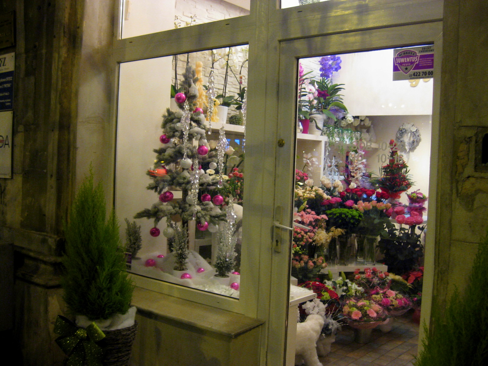 it's beginning to look a lot like Christmas.. in Warsaw | mała koza
